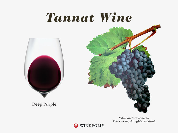 Tannat: the Biggest of the Big Reds
